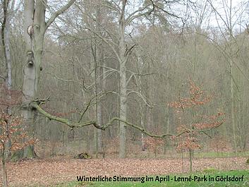 Lenné – Park kann er